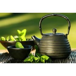 Польза и вред китайского чая пуэр