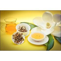 Желтый чай - где он растет, и в чем его особенности
